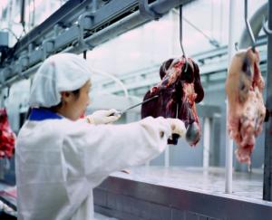 科尔沁牛业安全质量检测系统
