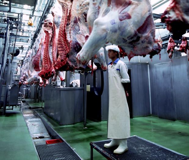 科尔沁牛业消毒系统