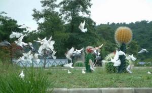 野生动物园预防禽流感来袭